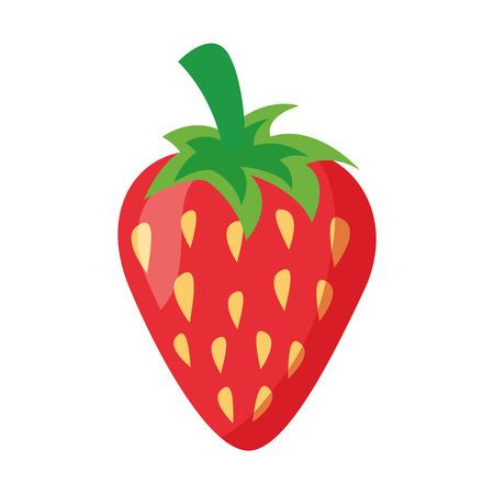 Erdbeere frisches Obst auf weißem Hintergrund Vektor-Illustration