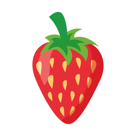 strawberry fresh fruit on white background vector illustration