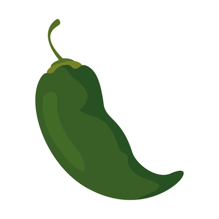 chili pepper vegetable icon vector illustration design
