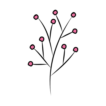 branch with seeds plant vector illustration design