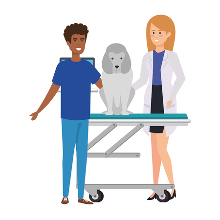 female veterinary with dog in stretcher vector illustration design