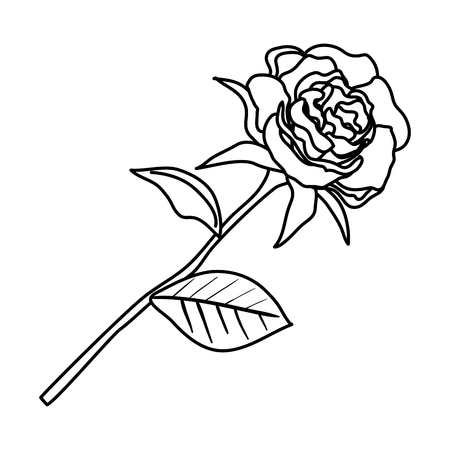 rose with leafs icon vector illustration design