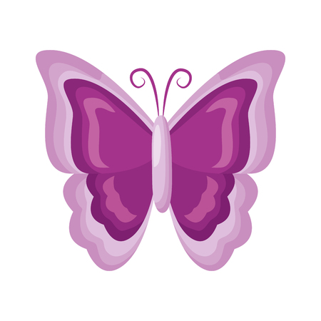 butterfly nature insect on white background vector illustration Banco de Imagens - 121246228