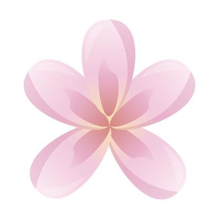 frangipani flower decoration on white background vector illustration 스톡 콘텐츠 - 123232163