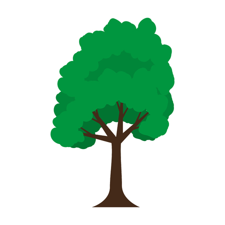 tree plant isolated icon vector illustration design Ilustração
