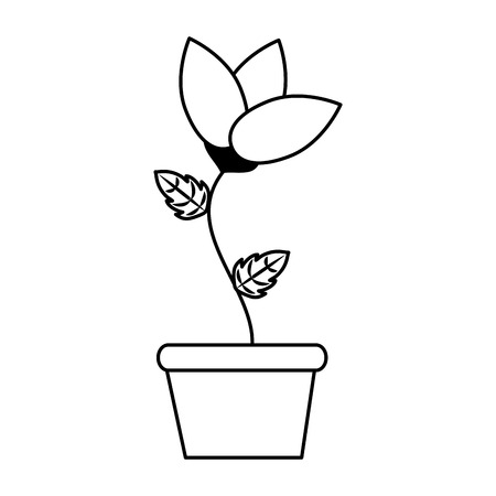 potted flower decoration on white background vector illustration