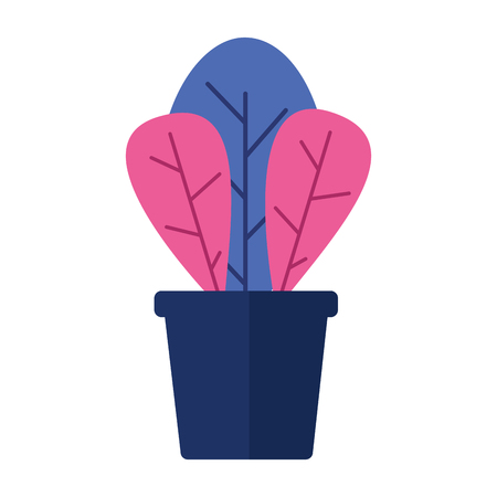 potted plant decoration on white background vector illustration