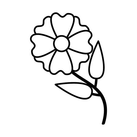 flower natural decoration on white background vector illustration