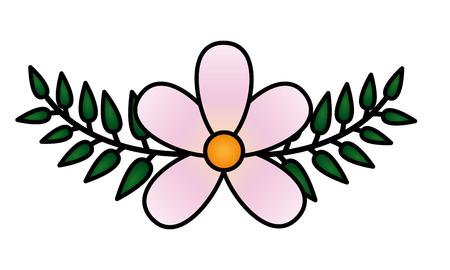 frangipani flower leaves decoration on white background vector illustration Çizim