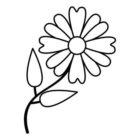bloem madeliefje natuur op witte achtergrond vectorillustratie