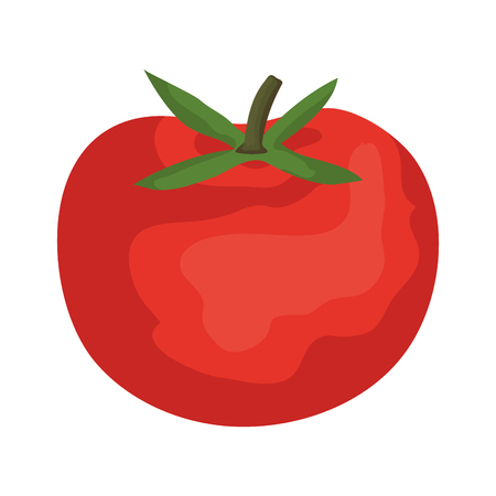 fresh tomato vegetable icon vector illustration design Ilustração