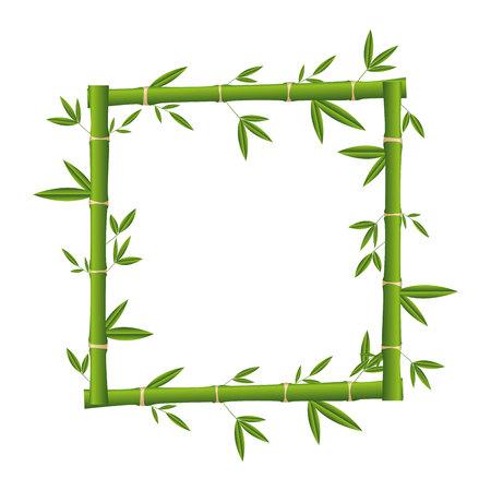 bamboo plant isolated icon vector illustration design Banco de Imagens - 122950773