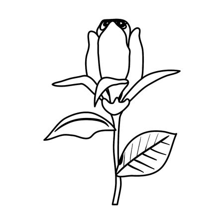 rose with leafs icon vector illustration design Archivio Fotografico - 122916835