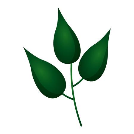green branch leaves nature white background vector illustration Illusztráció