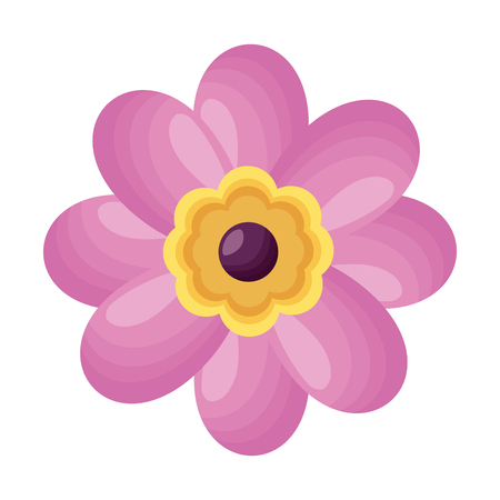 pink flower decoration on white background vector illustration Illustration