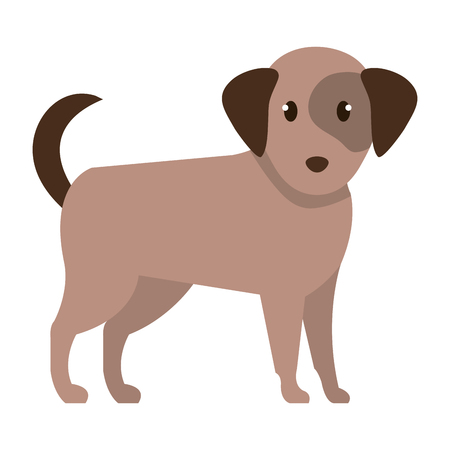 cute dog pet animal vector illustration design