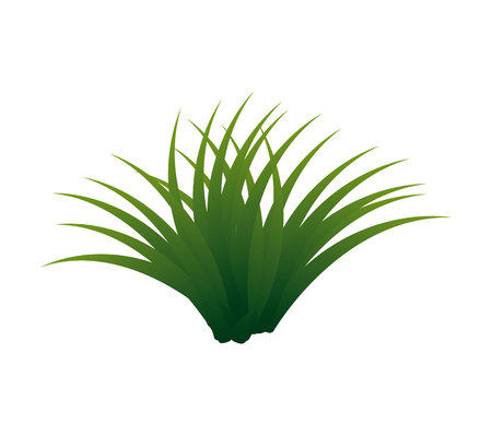 grass plant isolated icon vector illustration design Vettoriali