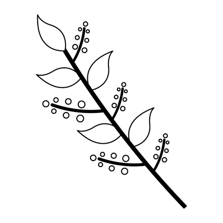 branch leaves berries on white background vector illustration design