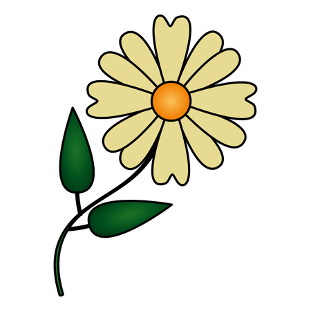naturaleza de la margarita de la flor en la ilustración del vector del fondo blanco