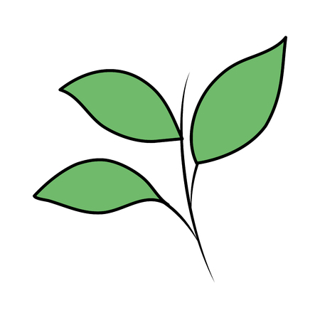 branch with leafs plant vector illustration design Illustration