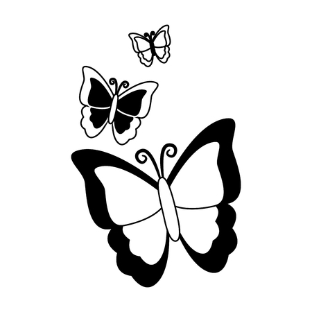 butterfly nature insect on white background vector illustration