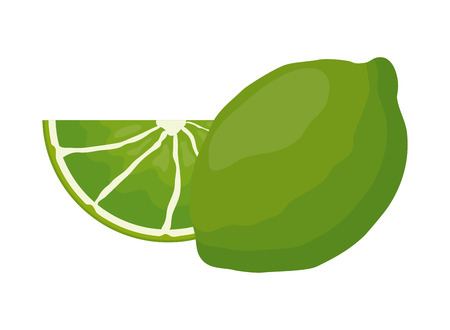 slice lemon fruit citrus on white background vector illustration Ilustração