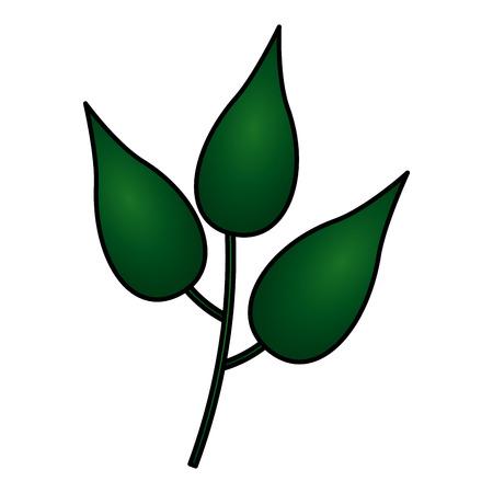 green branch leaves nature white background vector illustration 向量圖像