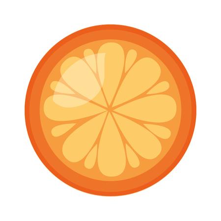 orange fresh fruit on white background vector illustration