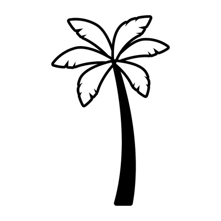 palm tree nature tropical on white background vector illustration