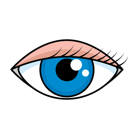 female eye isolated icon vector illustration design