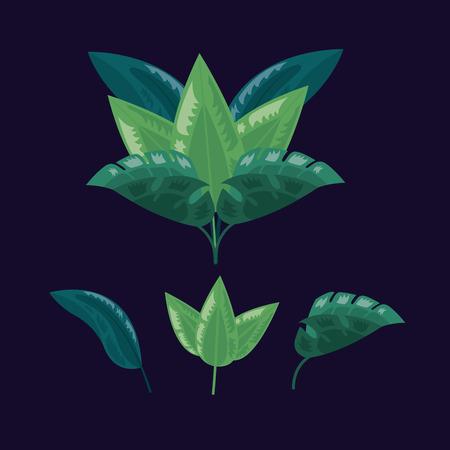 tropical leaves foliage nature dark background vector illustration Reklamní fotografie - 122815733