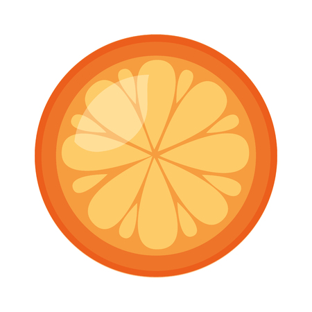 orange fresh fruit on white background vector illustration