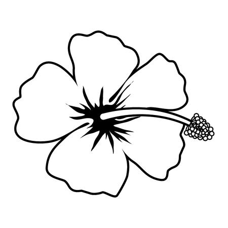 exotic tropical flower icon vector illustration design