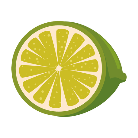 fresh lemon citrus fruit vector illustration design Illustration