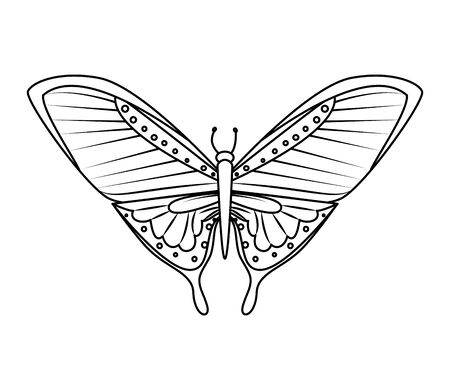 beautiful butterfly flying icon vector illustration design