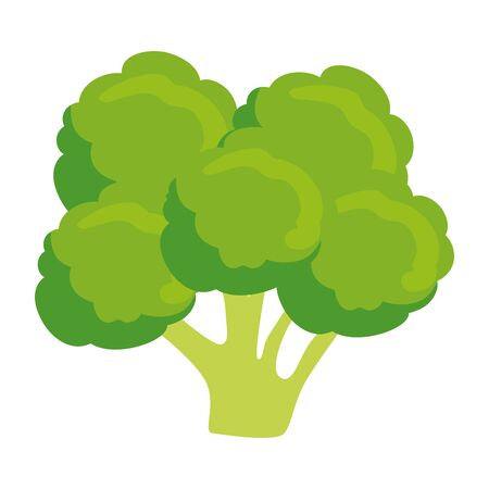 fresh broccoli vegetable icon vector illustration design Stock Vector - 124713309