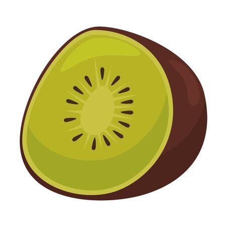fresh kiwi half exotic fruit vector illustration design Stok Fotoğraf - 124887715