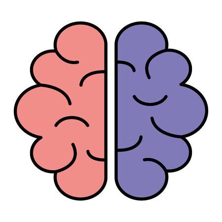 brain human organ icon vector illustration design Ilustração