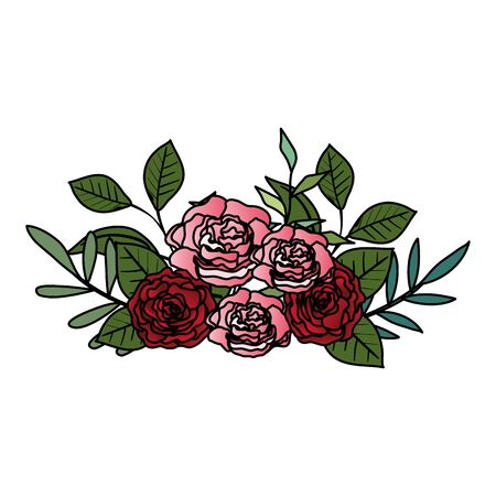 beautiful roses and leafs decoration vector illustration design 向量圖像