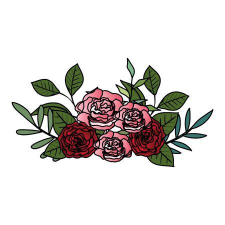 beautiful roses and leafs decoration vector illustration design Ilustração