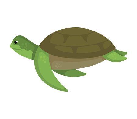 Tortue nature animale icône illustration vectorielle design Vecteurs