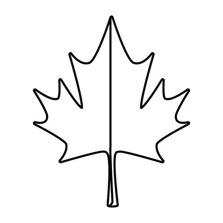 maple leaf canadian symbol icon vector illustration design