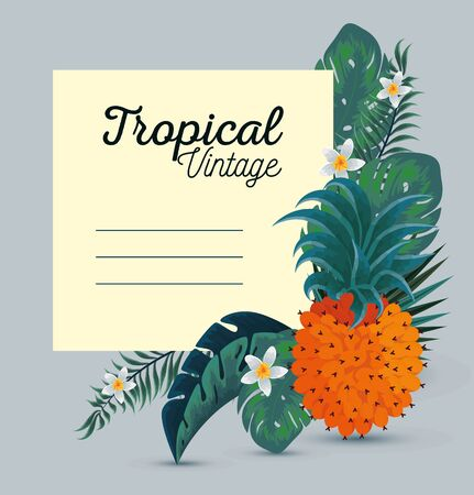 card with exotic pineapple and flowers with leaves vector illustration Banco de Imagens - 125051785
