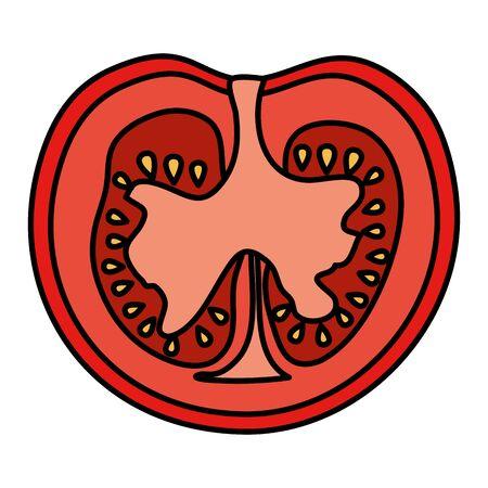 fresh tomato half icon vector illustration design
