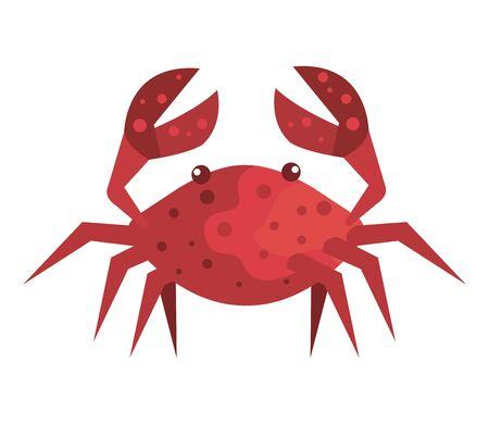 crab marine animal isolated icon vector illustration design Çizim