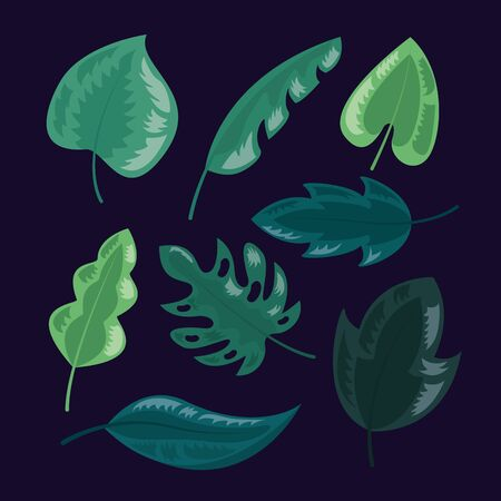 tropical leaves foliage nature dark background vector illustration