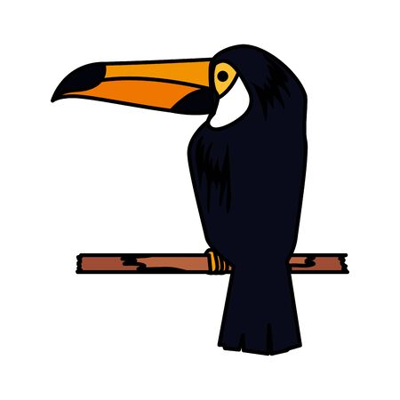 beautiful exotic toucan bird vector illustration design