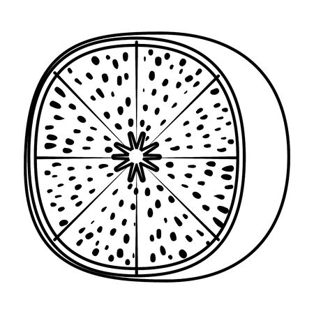 fresh tangerine half citrus fruit vector illustration design