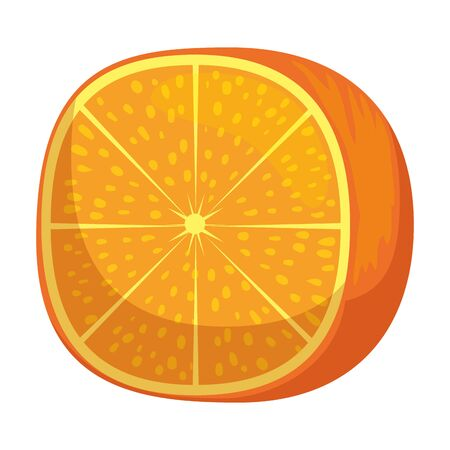 fresh tangerine half citrus fruit vector illustration design