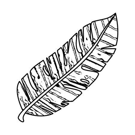 exotic leaf plant icon vector illustration design